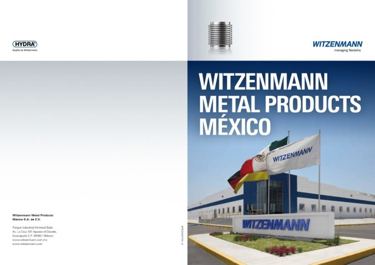 Witzenmann Metal Products México_preview